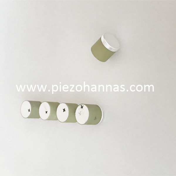 PZT-5 Material 8mm Column Piezoelectric Ceramic Cylinder