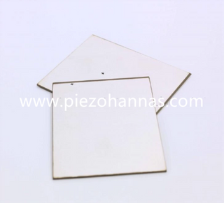 PZT4D Piezo Ceramic Plate Transducer for Underwater Acoustic