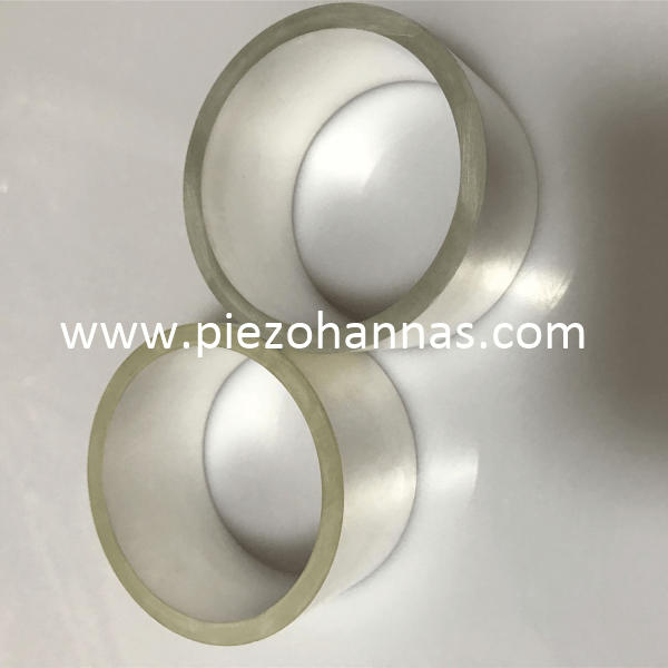 Custom Pzt Ceramic Piezo Ceramic Tube Piezoelectric Ceramic Hydrophone Probe