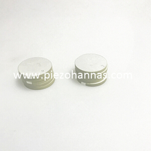 200 KHz Ceramic Disc Piezoelectric Ceramic Disc for Echosounder