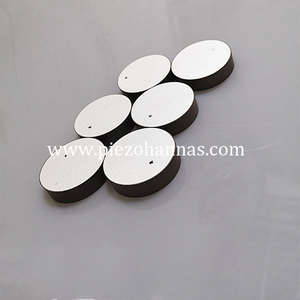 High Quality Piezo Dsc Piezo Ceramic Crystals for NDT Sensor